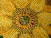 tinysunflowerdetail